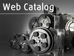 Search the Web Catalog